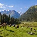 Viaggio in Uzbekistan e Kyrgizstan